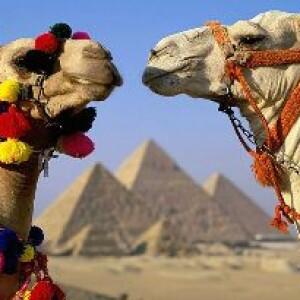 Банкротство туристических операторов